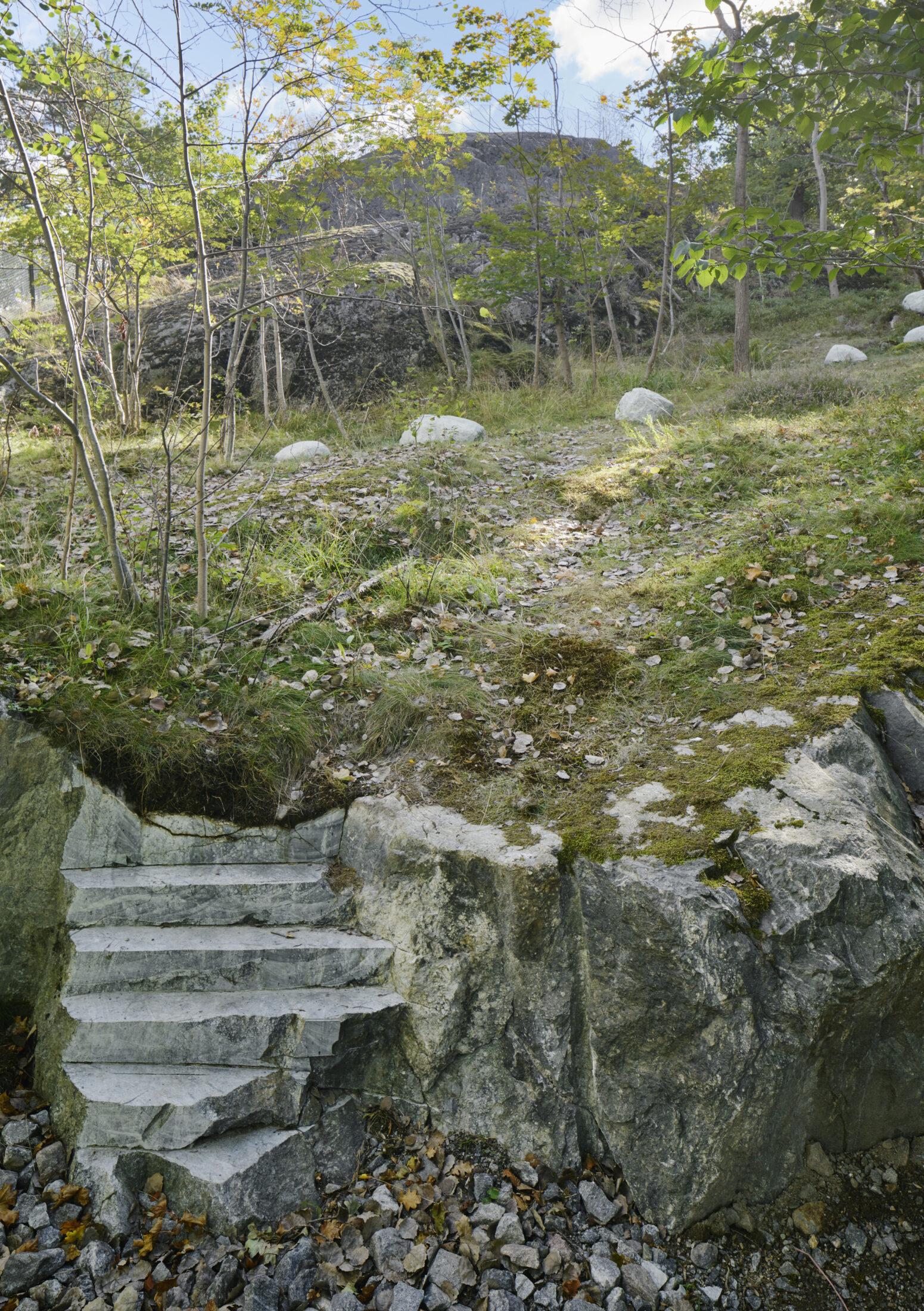 Bland bergen i Årstabergsparken finns en trappa där steg skurits ut.