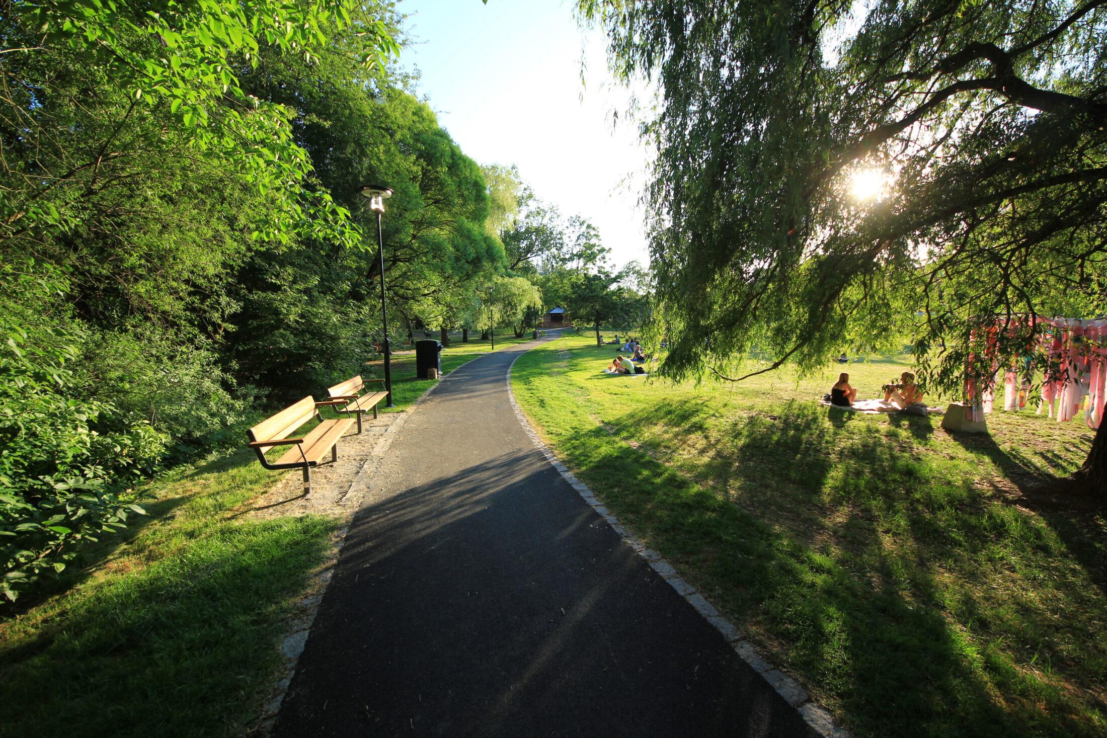Härlig grönska i Svandammsparken, Midsommarkransen, Stockholm